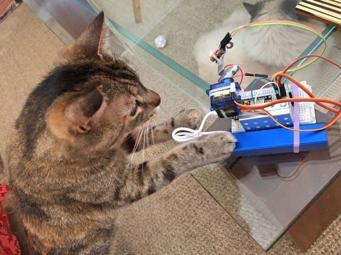 LaserCat – IoT com NodeMCU eBlynk